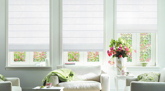 Shop electric roman blinds